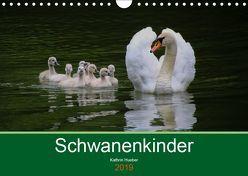 Schwanenkinder (Wandkalender 2019 DIN A4 quer) von Hueber,  Kathrin