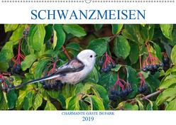 Schwanzmeisen (Wandkalender 2019 DIN A2 quer) von Jäger,  Anette