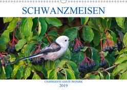 Schwanzmeisen (Wandkalender 2019 DIN A3 quer) von Jäger,  Anette