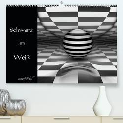 Schwarz trifft Weiß (Premium, hochwertiger DIN A2 Wandkalender 2021, Kunstdruck in Hochglanz) von manhART