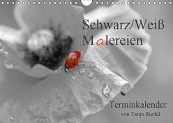 Schwarz-Weiß Malereien Terminkalender von Tanja Riedel (Wandkalender 2019 DIN A4 quer) von Riedel,  Tanja