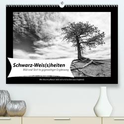 Schwarz-Weis(s)heiten (Premium, hochwertiger DIN A2 Wandkalender 2021, Kunstdruck in Hochglanz) von Klesse,  Andreas