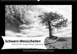 Schwarz-Weis(s)heiten (Wandkalender 2019 DIN A2 quer) von Klesse,  Andreas