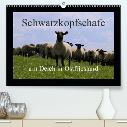 Schwarzkopfschafe am Deich in Ostfriesland (Premium, hochwertiger DIN A2 Wandkalender 2021, Kunstdruck in Hochglanz) von Poetsch,  Rolf