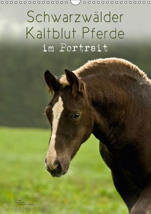 Schwarzwälder Kaltblut Pferde im Portrait (Wandkalender 2018 DIN A3 hoch) von Homberg,  Simone