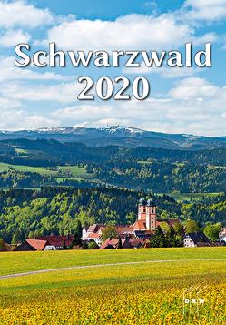 Schwarzwald 2020