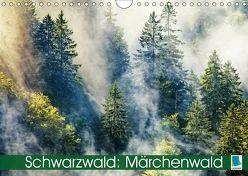 Schwarzwald: Märchenwald (Wandkalender 2018 DIN A4 quer) von CALVENDO,  k.A.