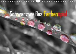 Schwarzweißes Farbenspiel 2019 / CH-Version (Wandkalender 2019 DIN A4 quer) von Poetsch,  Rolf