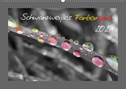 Schwarzweißes Farbenspiel 2021 (Wandkalender 2021 DIN A2 quer) von Poetsch,  Rolf