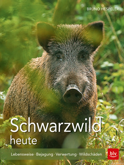 Schwarzwild heute von Hespeler,  Bruno
