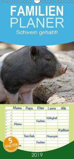 Schwein gehabt! – Familienplaner hoch (Wandkalender 2019 , 21 cm x 45 cm, hoch) von Lindert-Rottke,  Antje