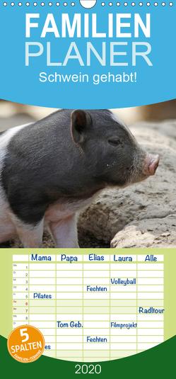 Schwein gehabt! – Familienplaner hoch (Wandkalender 2020 , 21 cm x 45 cm, hoch) von Lindert-Rottke,  Antje