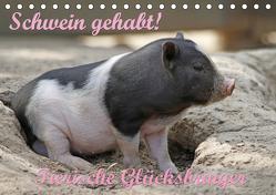Schwein gehabt! (Tischkalender 2020 DIN A5 quer) von Lindert-Rottke,  Antje