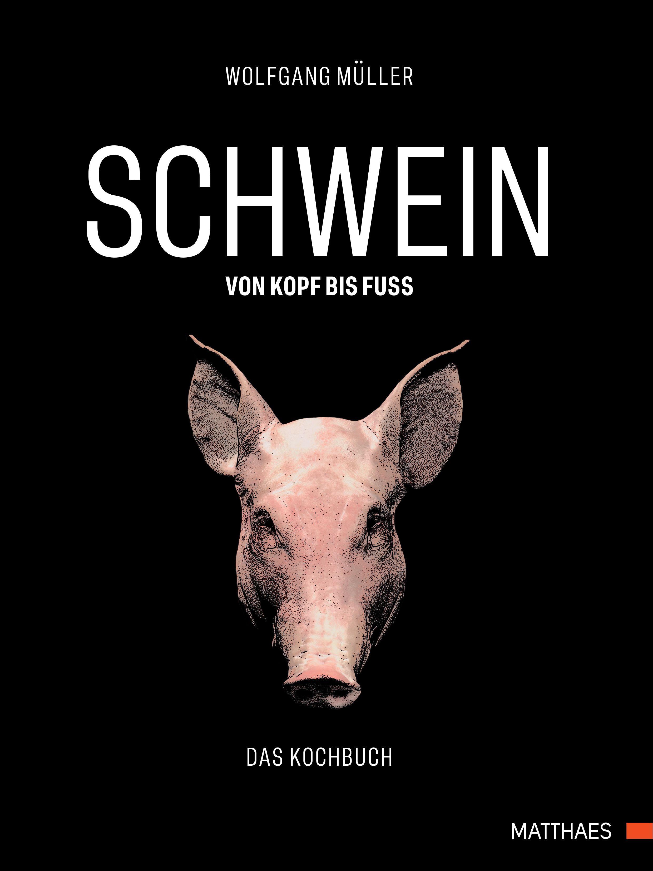 Ziemlich Schwein Zähne Anatomie Galerie - Physiologie Von ...