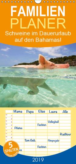 Schweine im Dauerurlaub auf den Bahamas! – Familienplaner hoch (Wandkalender 2019 , 21 cm x 45 cm, hoch) von Stanzer,  Elisabeth