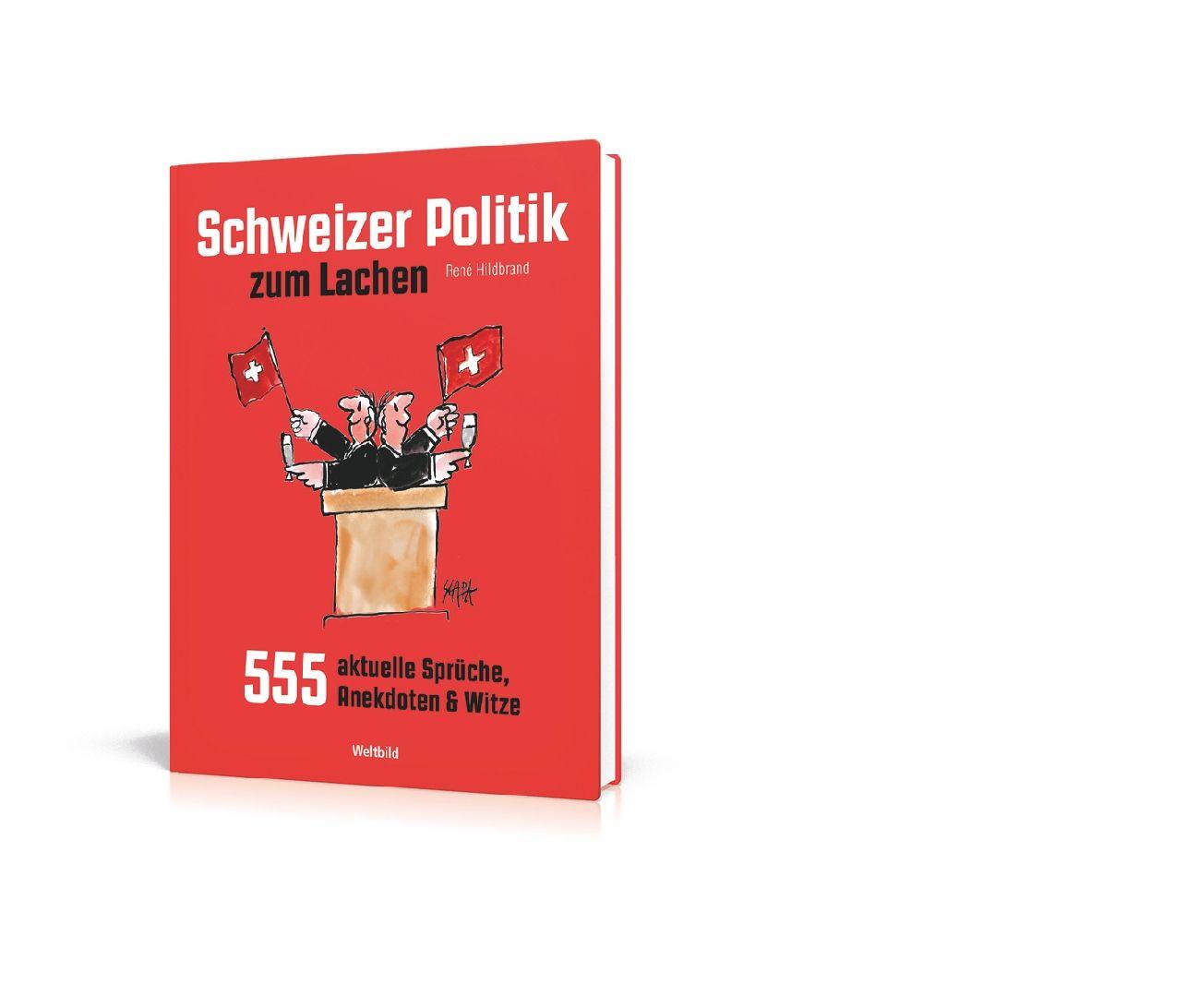 schweizer politik