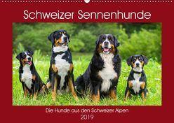 Schweizer Sennenhunde – die Hunde aus den Schweizer Alpen (Wandkalender 2019 DIN A2 quer) von Starick,  Sigrid