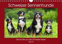 Schweizer Sennenhunde – die Hunde aus den Schweizer Alpen (Wandkalender 2019 DIN A4 quer) von Starick,  Sigrid