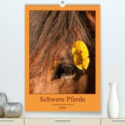 Schwere Pferde – Faszinierende Herzensbrecher (Premium, hochwertiger DIN A2 Wandkalender 2020, Kunstdruck in Hochglanz) von Bölts,  Meike