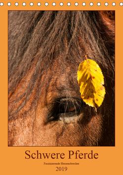 Schwere Pferde – Faszinierende Herzensbrecher (Tischkalender 2019 DIN A5 hoch) von Bölts,  Meike