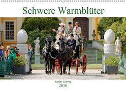 Schwere Warmblüter 2019 (Wandkalender 2019 DIN A2 quer) von Ludwig,  Sandra