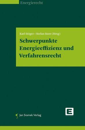 Schwerpunkte Energieeffizienz und Verfahrensrecht von Stöger,  Karl, Storr,  Stefan