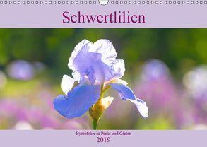 Schwertlilien – Eyecatcher in Parks und Gärten (Wandkalender 2019 DIN A3 quer) von Scheurer,  Monika