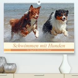 Schwimmen mit Hunden – Ein Spaß für Mensch und Hund (Premium, hochwertiger DIN A2 Wandkalender 2021, Kunstdruck in Hochglanz) von Chawera