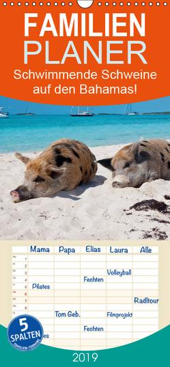 Schwimmende Schweine auf den Bahamas! – Familienplaner hoch (Wandkalender 2019 , 21 cm x 45 cm, hoch) von Stanzer,  Elisabeth