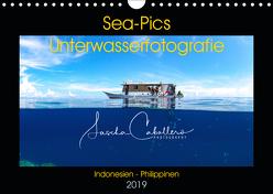 Sea-Pics Unterwasserfotografie (Wandkalender 2019 DIN A4 quer) von Caballero,  Sascha