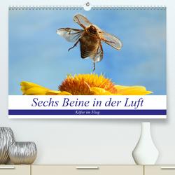 Sechs Beine in der Luft – Käfer im Flug (Premium, hochwertiger DIN A2 Wandkalender 2020, Kunstdruck in Hochglanz) von Skonieczny,  André