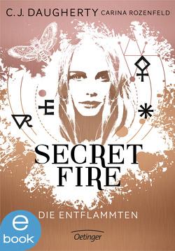 Secret Fire. Die Entflammten von Daugherty,  C.J., Klöss,  Peter, Liepins,  Carolin, Rozenfeld,  Carina, Wurm,  Jutta