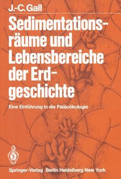 Sedimentationsräume und Lebensbereiche der Erdgeschichte von Gall,  J.-C., Schneider,  E, Schneider,  H.