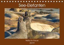 See-Elefanten (Tischkalender 2019 DIN A5 quer) von Smith,  Sidney