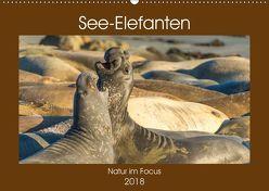 See-Elefanten (Wandkalender 2018 DIN A2 quer) von Smith,  Sidney