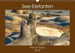 See-Elefanten (Wandkalender 2018 DIN A3 quer) von Smith,  Sidney