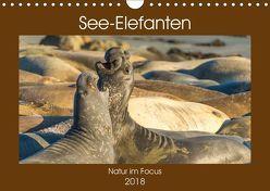 See-Elefanten (Wandkalender 2018 DIN A4 quer) von Smith,  Sidney