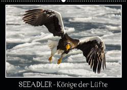 Seeadler – Könige der Lüfte (Wandkalender 2021 DIN A2 quer) von Schwarz Fotografie,  Thomas