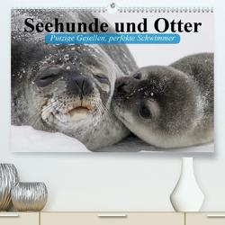 Seehunde und Otter. Putzige Gesellen, perfekte Schwimmer (Premium, hochwertiger DIN A2 Wandkalender 2020, Kunstdruck in Hochglanz) von Stanzer,  Elisabeth