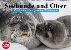 Seehunde und Otter. Putzige Gesellen, perfekte Schwimmer (Wandkalender 2019 DIN A2 quer) von Stanzer,  Elisabeth