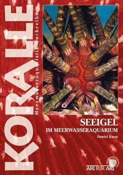 Seeigel im Meerwasseraquarium von Knop,  Daniel