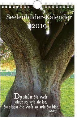 Seelenbilder-Kalender 2019 von Schirner,  Markus