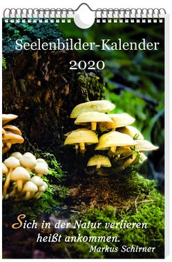 Seelenbilder-Kalender 2020 von Schirner,  Markus