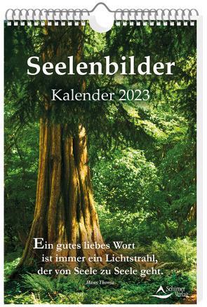 Seelenbilder-Kalender 2023 von Schirner,  Markus