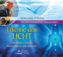 Erkenne dein Licht von Stengel,  Reinhard