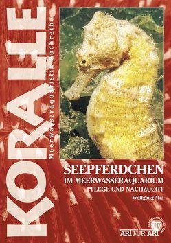 Seepferdchen im Meerwasseraquarium von Mai,  Wolfgang
