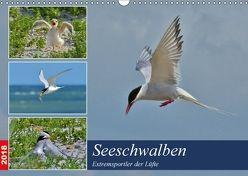 Seeschwalben – Extremsportler der Lüfte (Wandkalender 2018 DIN A3 quer) von Schaack,  René