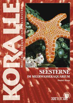 Seesterne im Meerwasseraquarium von Knop,  Daniel