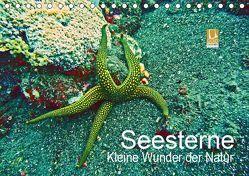 Seesterne – Kleine Wunder der Natur (Tischkalender 2019 DIN A5 quer) von Hess,  Andrea