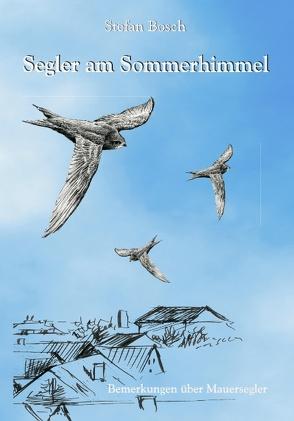 Segler am Sommerhimmel von Bosch,  Stefan